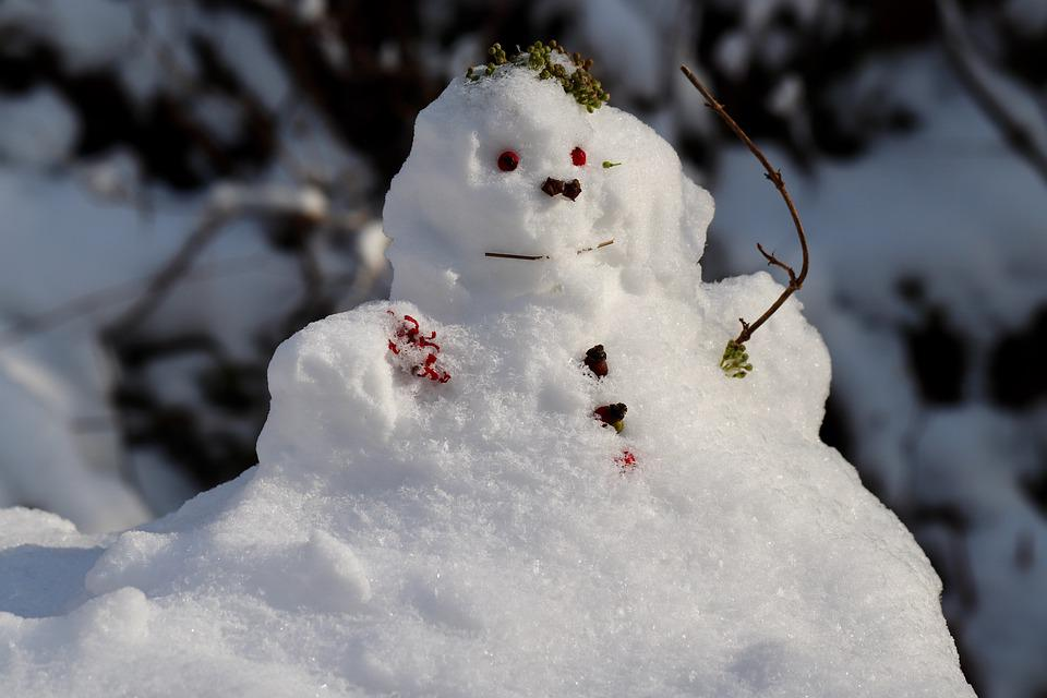 Snowman, Snow, Frost, Winter, Cold, Snowy