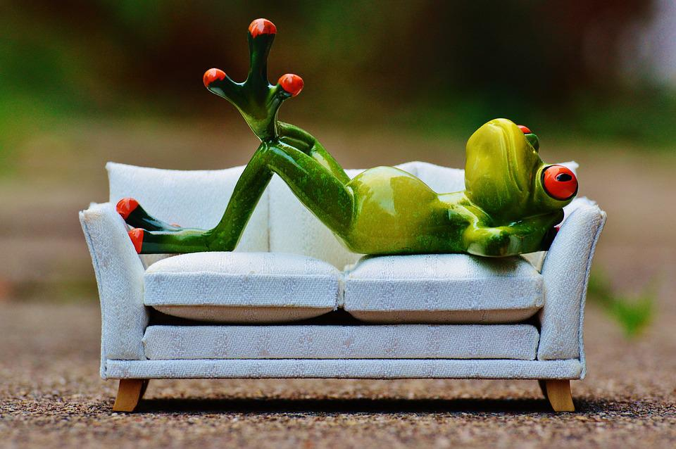 Frog, Sofa, Relaxation, Rest, Funny, Cute, Fig, Couch