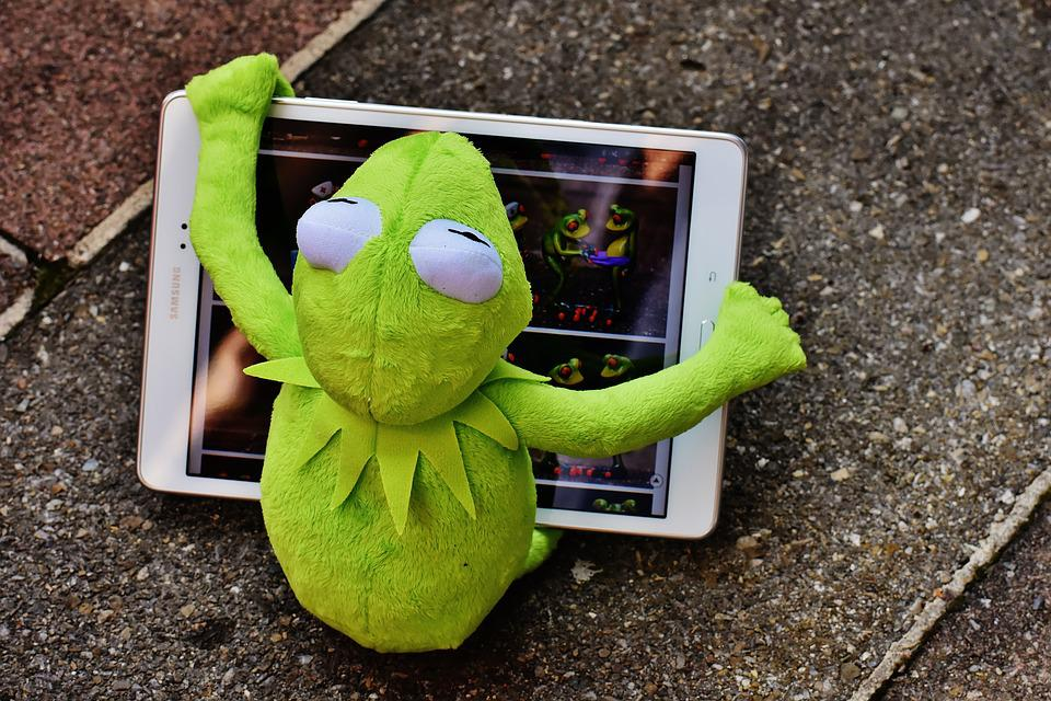 Kermit, Frog, Tablet, Computer, Fig, Soft Toy