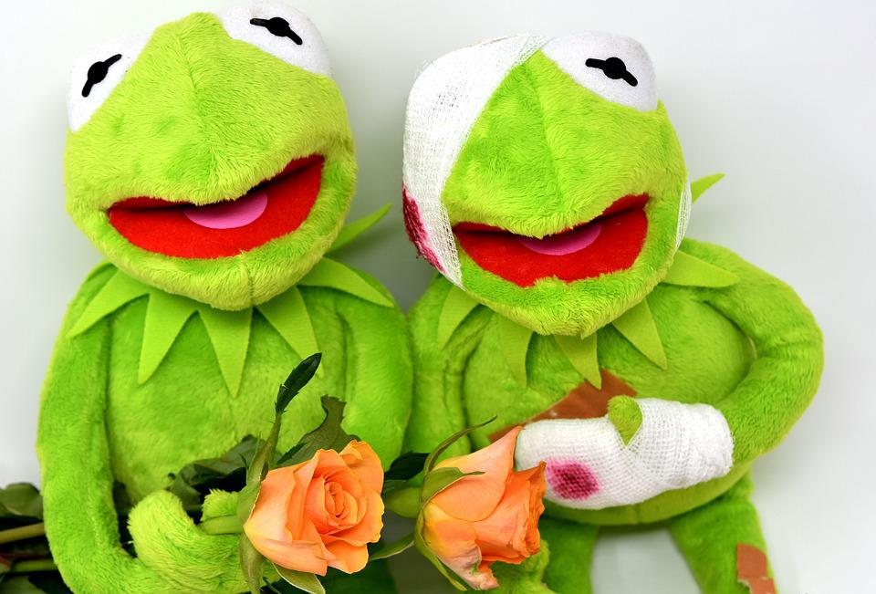 Free photo soft toy kermit roses frog get well soon greetings max kermit greetings frog get well soon roses soft toy m4hsunfo