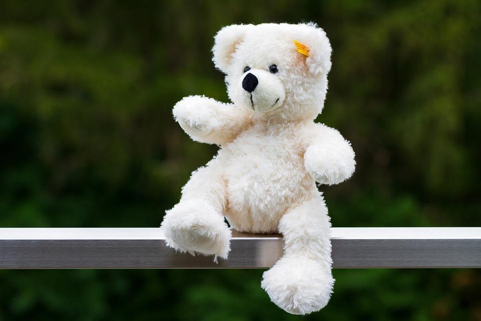 Teddy Bear, Stuffed Animal, Soft Toy, Toy, Plush