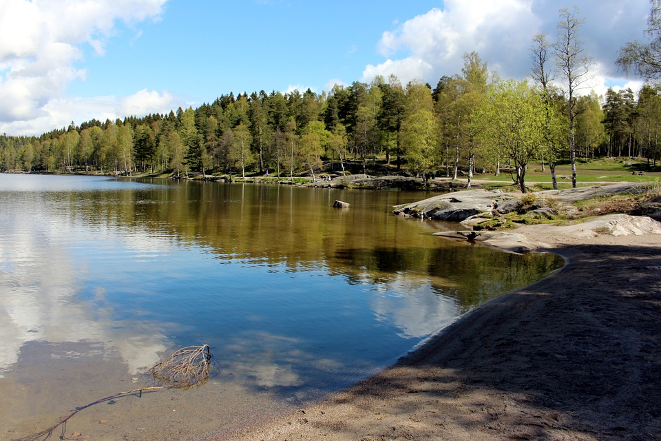 Oslo, Sognsvann, Norway, Lake, Nordmarka, Visitoslo