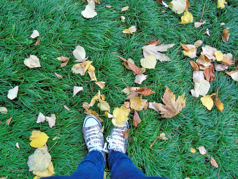 Feet, Autumn, Lawn, Soil, Traveller, Travel, Air