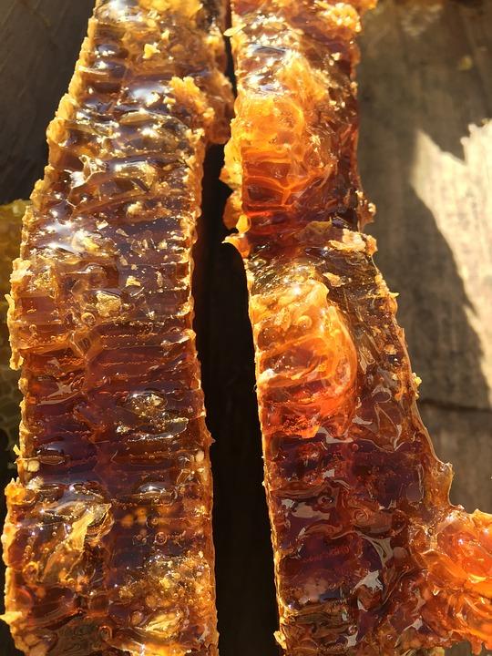 Soil Honey, The Original Ecology, Natural