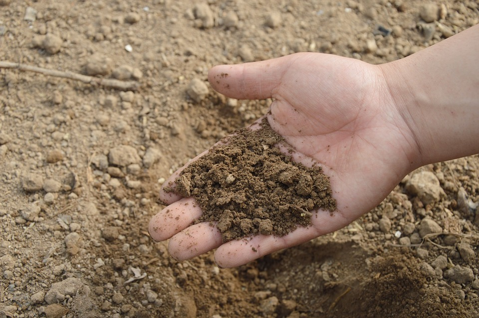Soil, Hand, Farm, Garden, Fertilizer, Compost, Organic