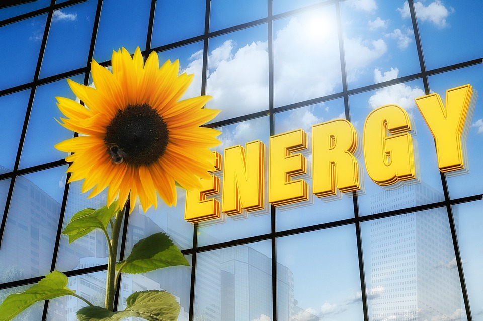 Energy, Sun Flower, Font, Solar, Skyscraper