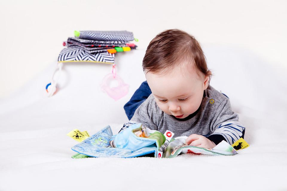 Child, Baby, Education, Toy, Son, Fun, Booklet, Touch