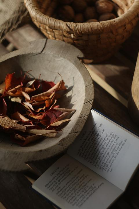 Autumn, Red, Leaves, Mood, Sonnet, Still Life
