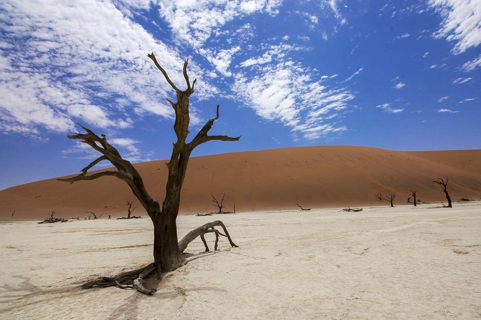 Sossusvlei, Deadvlei, Desert, Africa, Namibia, Sand