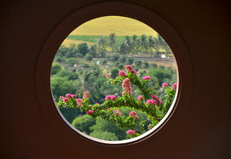 Window, Sour, Vietnam, An Giang Province, Coloring