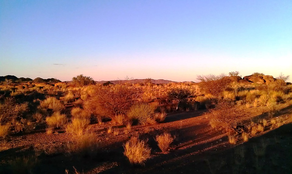 South Africa, Northern Cape, Landscape, Nature