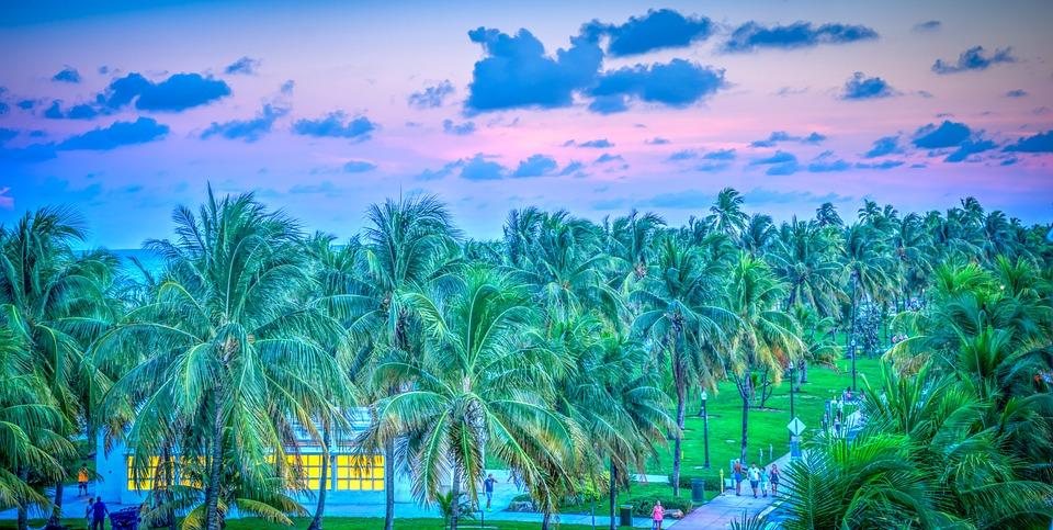 South Beach Miami Florida Sunset Palm Trees