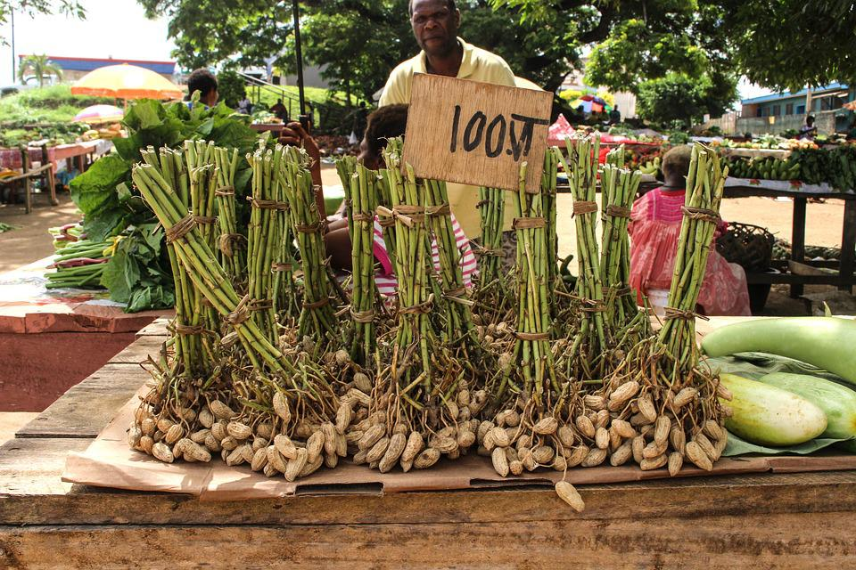 Market, South Sea, Vanuatu, Nuts, Market Day, Seller
