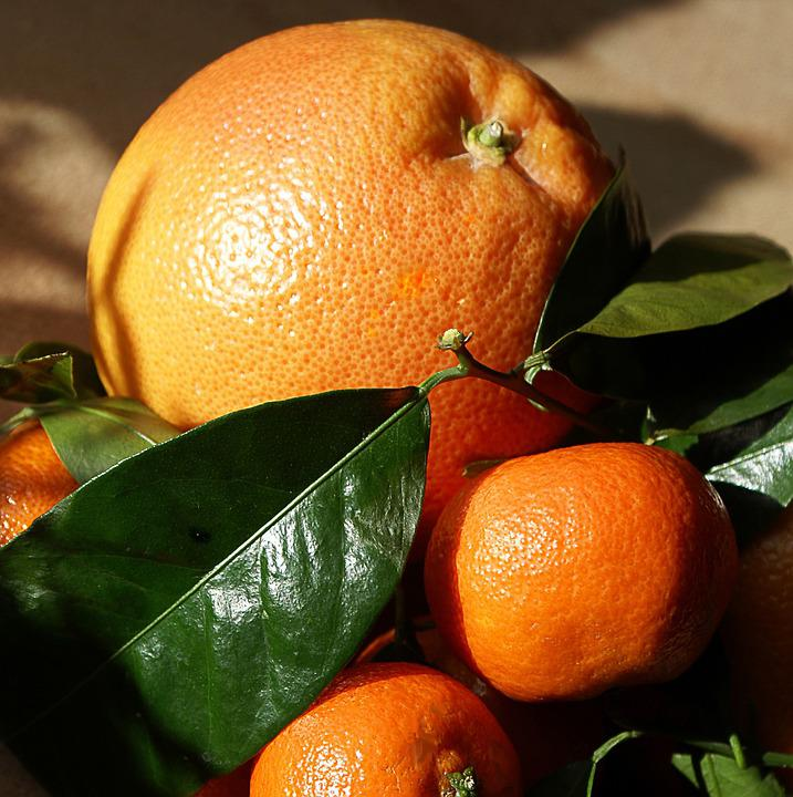 Oranges, Mandarins, Southern Fruits, Fruit, The Stem