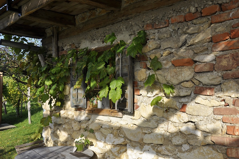 Southern Styria, Wine, Autumn