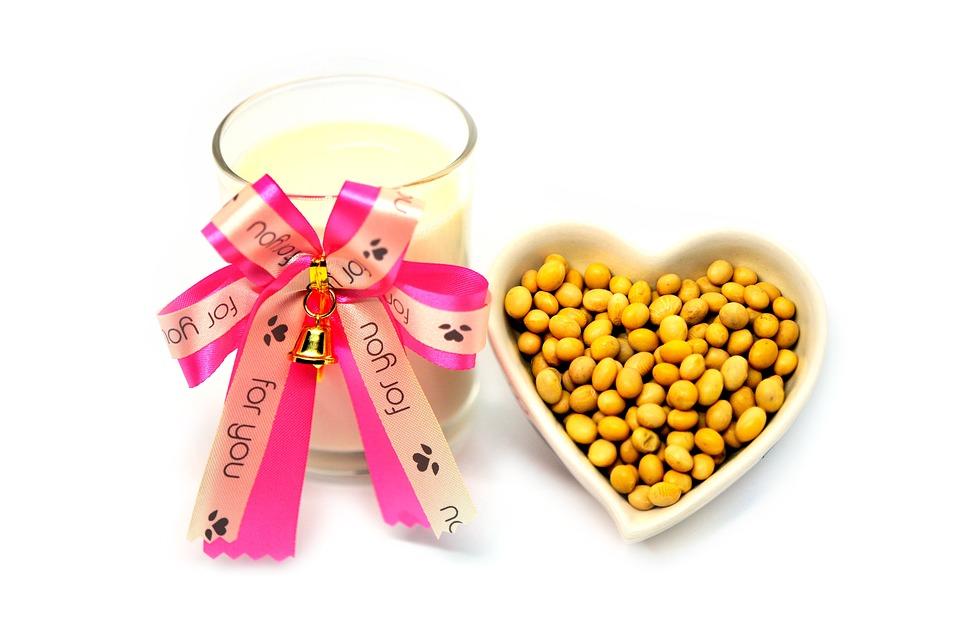 Milk, Soy, White, Isolated, Soya, Bean, Soybean, Glass