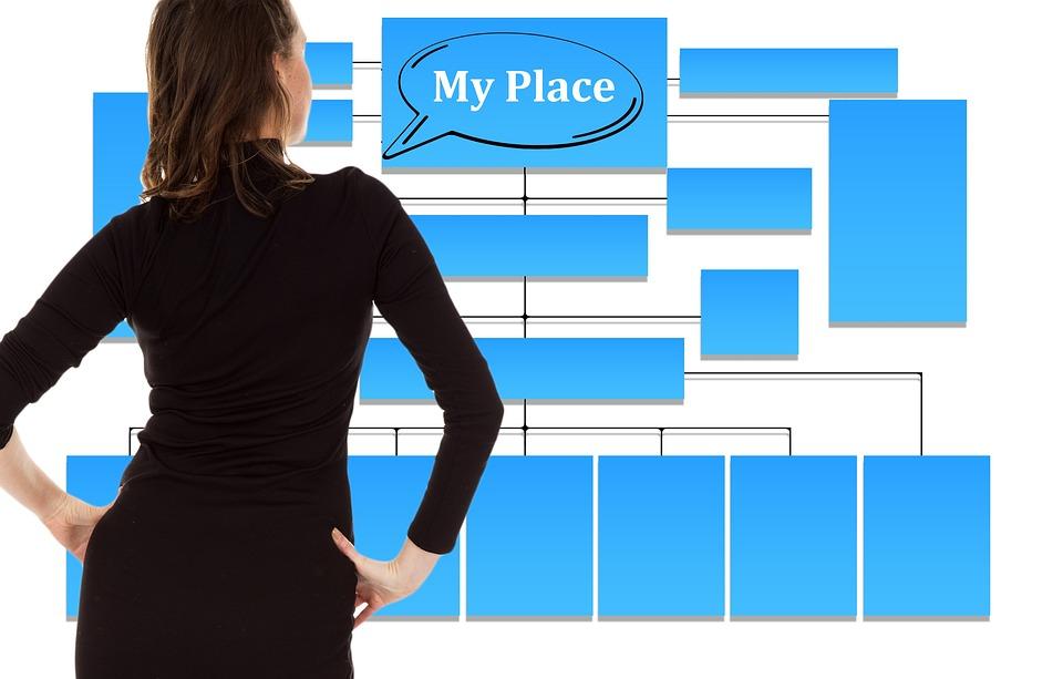 Businesswoman, Organization Chart, Organization, Space