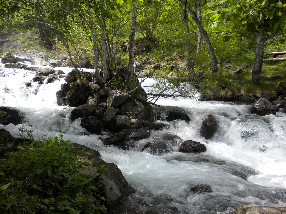 Spain, Andorra, Streams, Forest, Trees