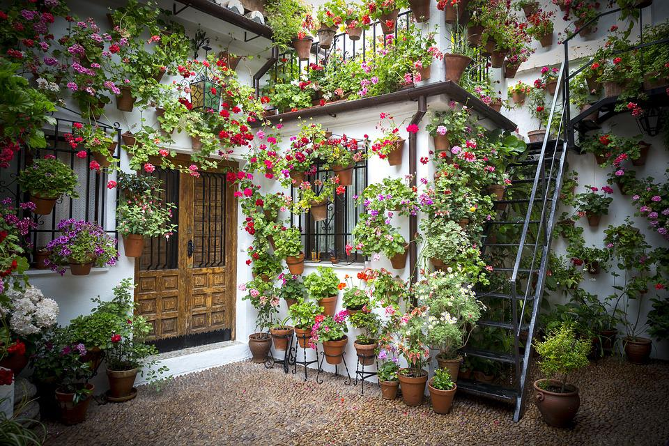 Pots, Patio, Andalusian Patio, Potted Plant, Spain