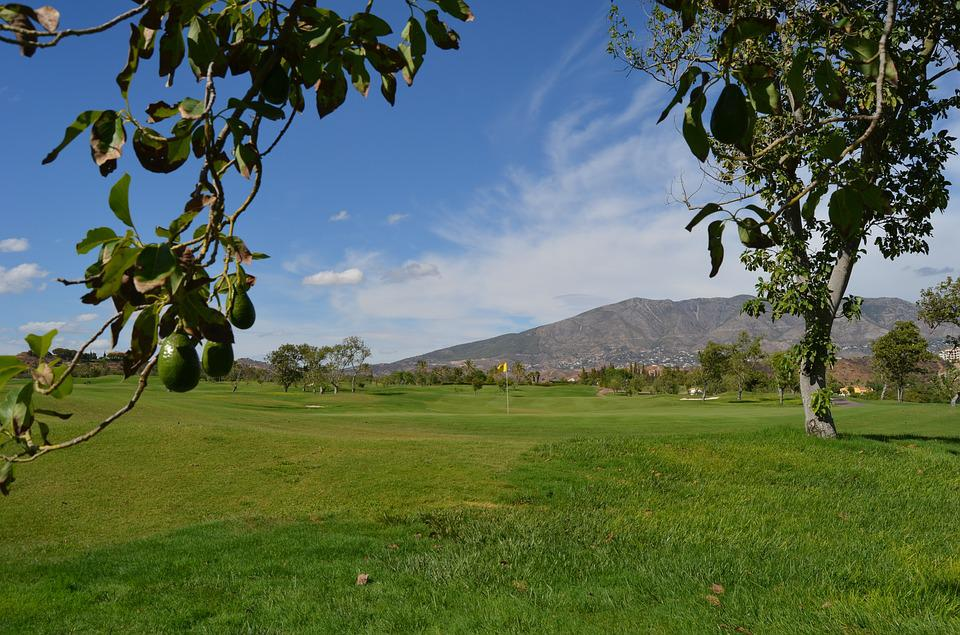 Golf, Avocado, Spain, Santana