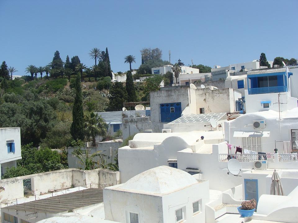 Arabic, Houses, Blue, White, Tunis, Spectacular
