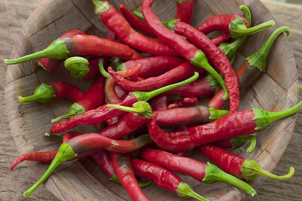 Chillis, Chillies, Gardening, Vegetable, Hot, Spicy