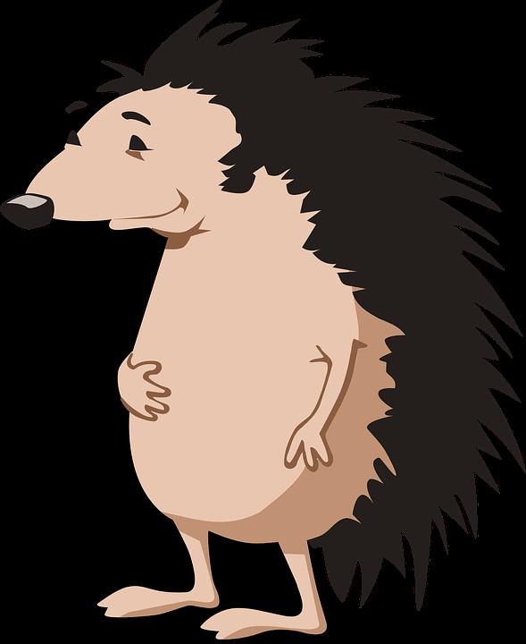 Hedgehog, Animal, Spikes, Mammal, Cartoon, Happy