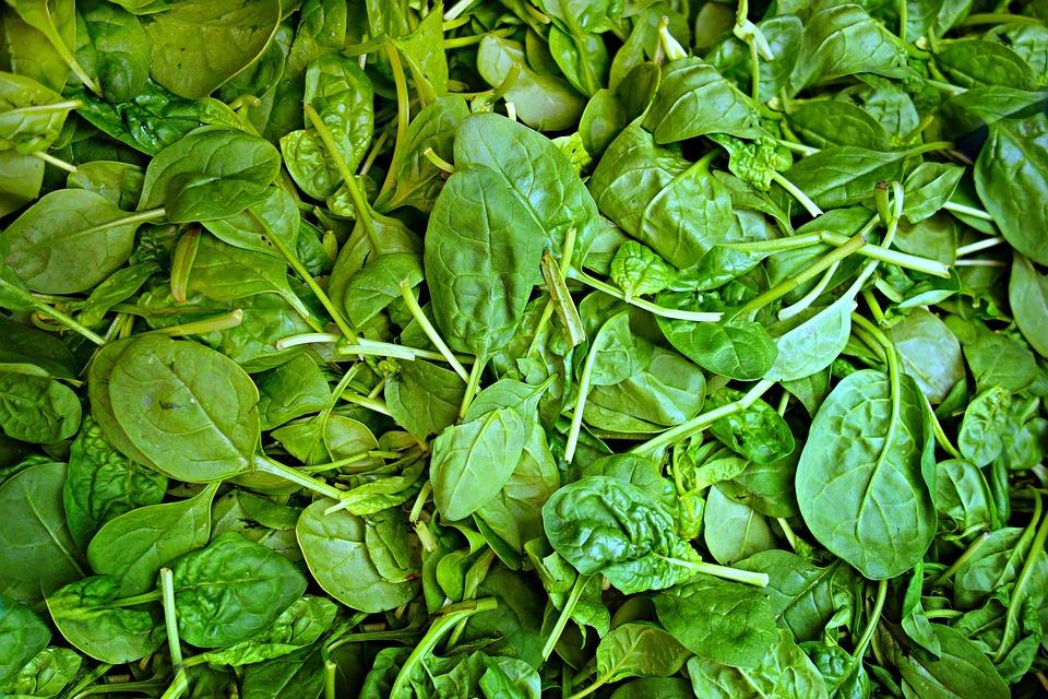 Spinach, Vegetable, Fresh Vegetable, Food, Nutrition