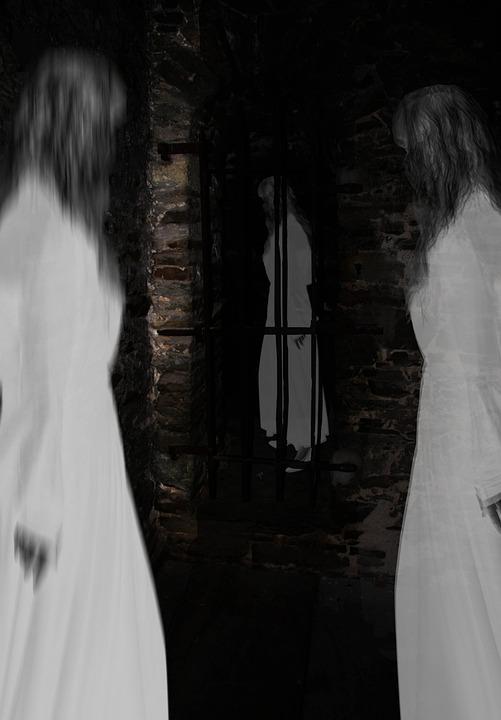 Spooky, Caught, Masonry, Facade, Imprisoned, Grid, Ruin