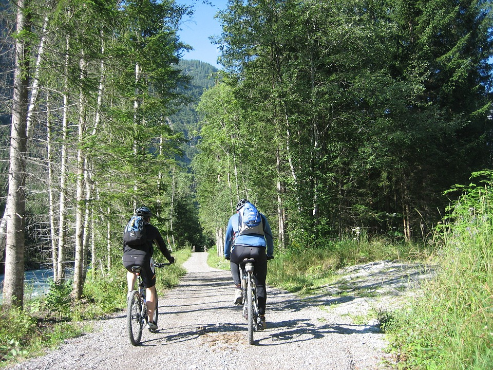 Cycling, Bike, Transalp, Sport, Switzerland, Austria