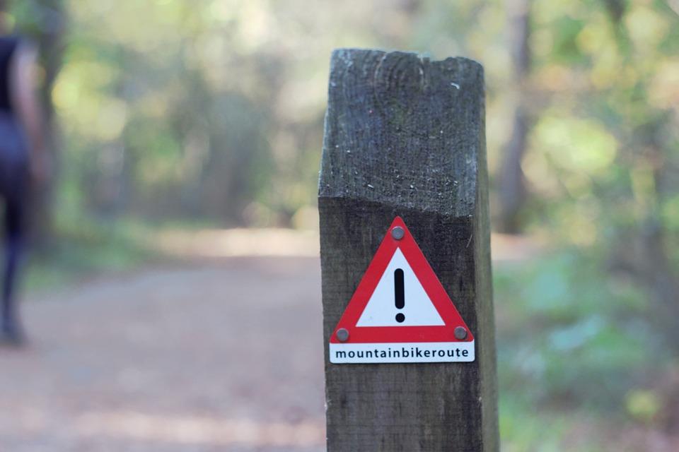 Mountain Bike, Forests, Nature, Cycling, Sports, Biker