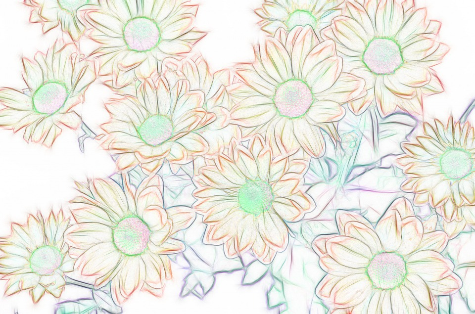 Background, Flowers, Orange, Green, Spring, Colorful