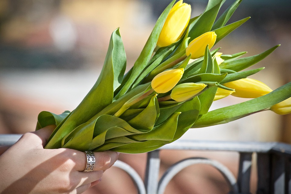 Tulips, Yellow Tulips, Bouquet, Yellow, Flowers, Spring