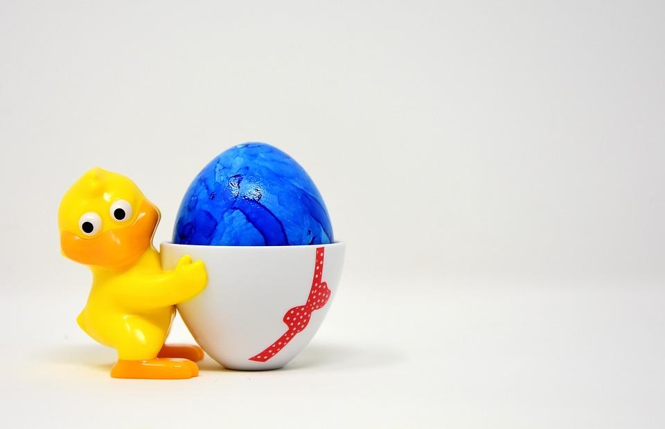 Easter Egg, Chicks, Egg Cups, Funny, Colorful, Spring