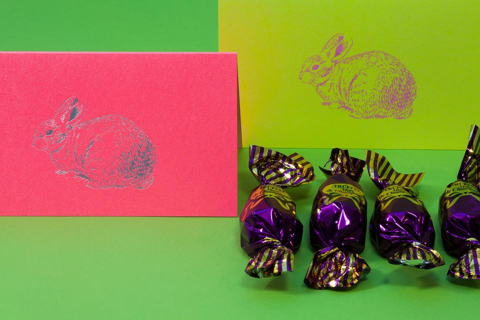 Easter Bunny, Chocolate Pralines, Spring