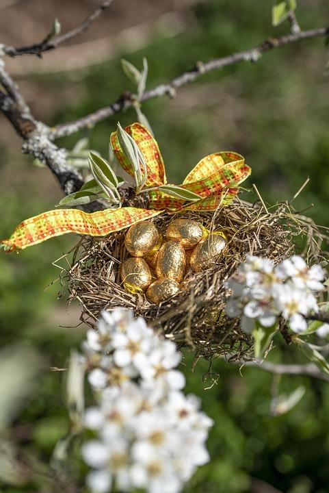 Easter, Eggs, Walleye, Spring, Hunting, Nest