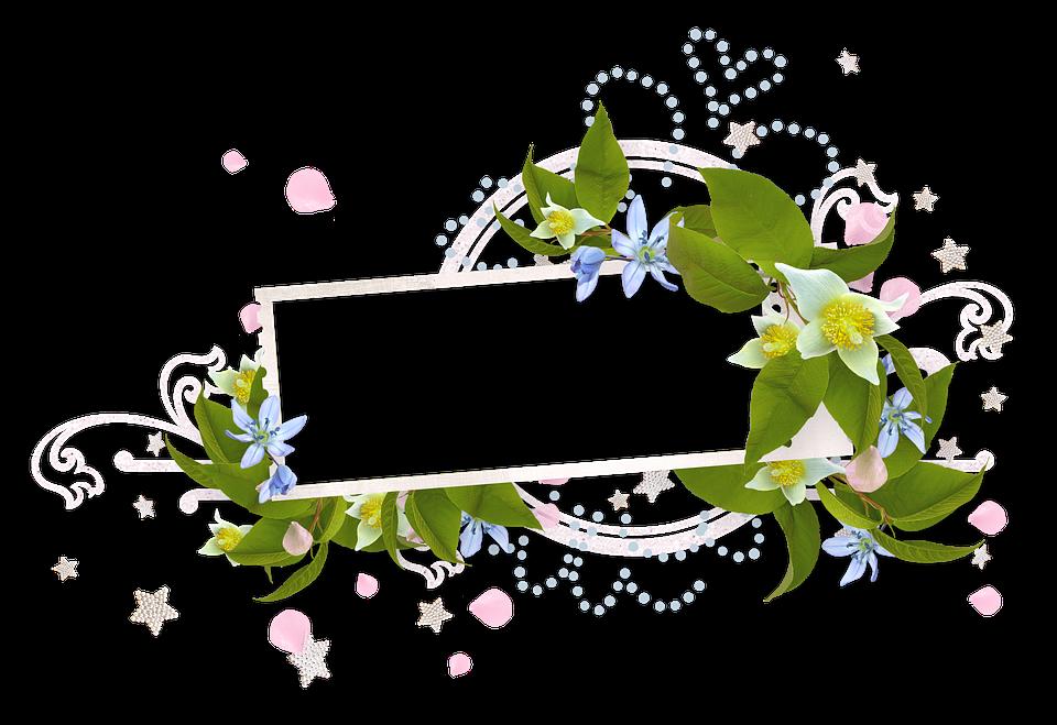 Spring, Bloom, Spring Flower, Nature, Flowers
