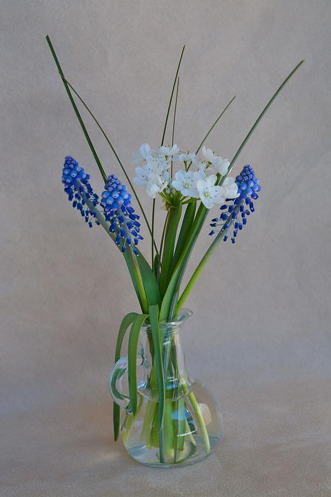 Free Photo Spring Flowers Flower Vase Flowers Glass Vase Vase Max