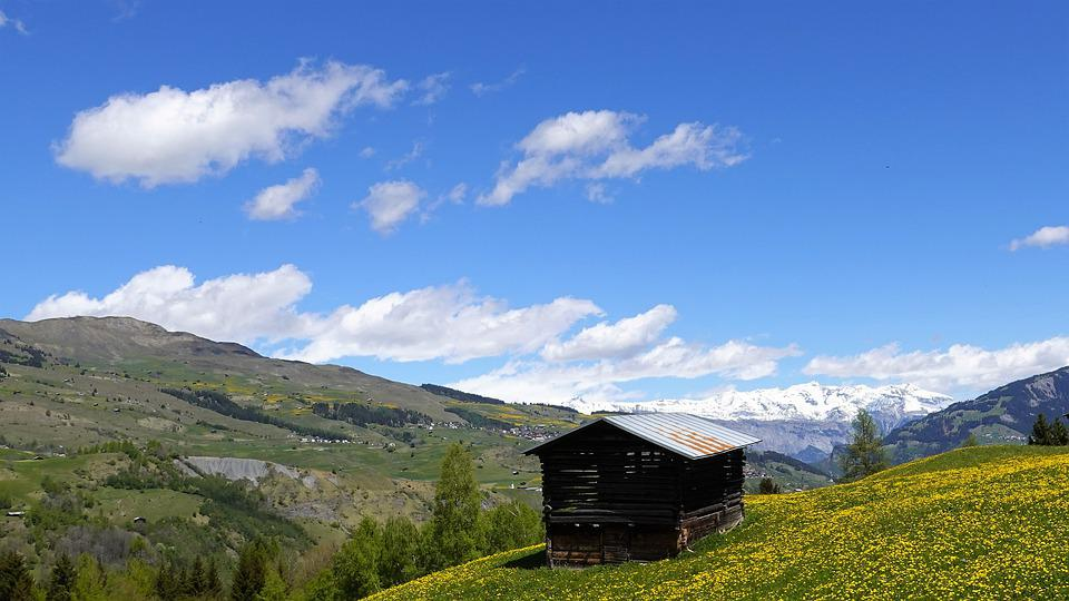 Spring, Mountain Landscape, Meadow