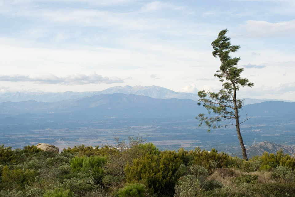 Spain, Tree, Mountains, Nature, Spring, Land, Day, Wind