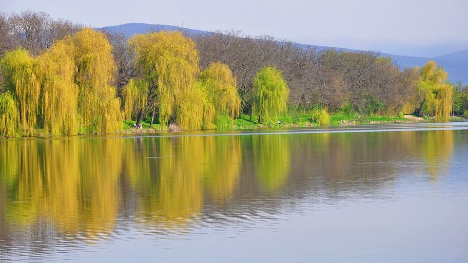 Spring, Lake, Nature, Promo