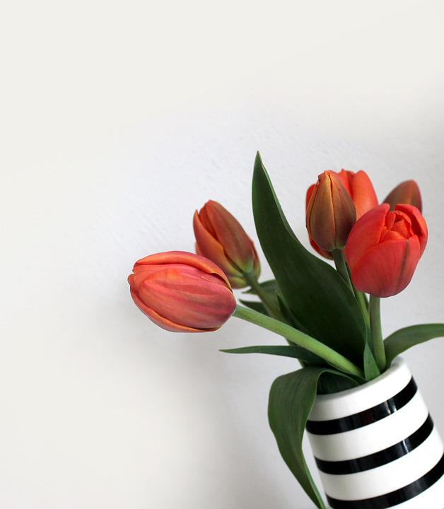 Tulips, Vase, Bouquet, Flowers, Stripes, Spring, Orange