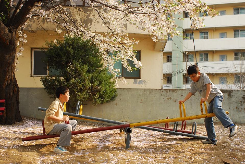 Playground, Children, Cherry Blossom, Spring