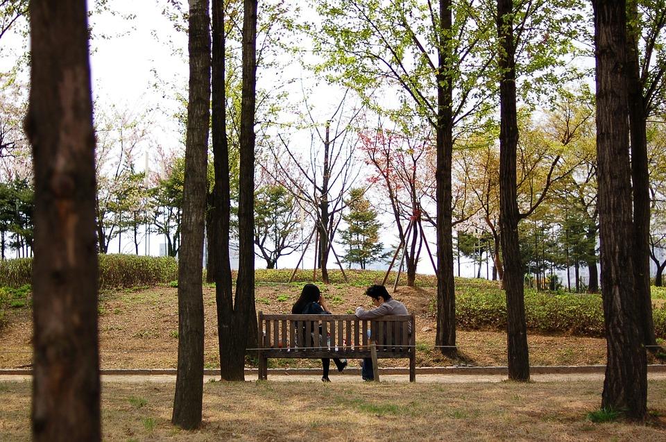 Lovers, Seonyudo, Spring, Bench