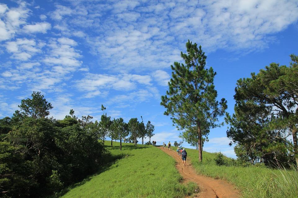 Spring, Hill, Landscape, Sky