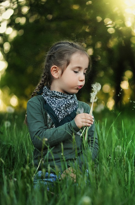 Child, Dandelion, Kids, Spring, Nature, Grass, Summer