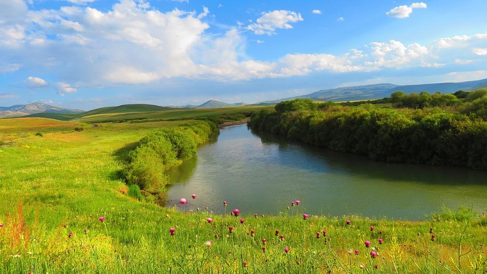 Flower, Spring, Erzurum, Tea, River, Landscape, Nature