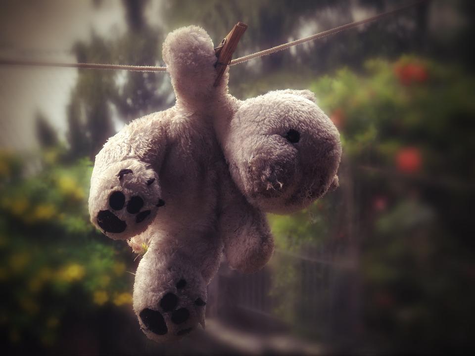 Teddy Bear, Bear, Clothes Line, Drying, Spring, Plush