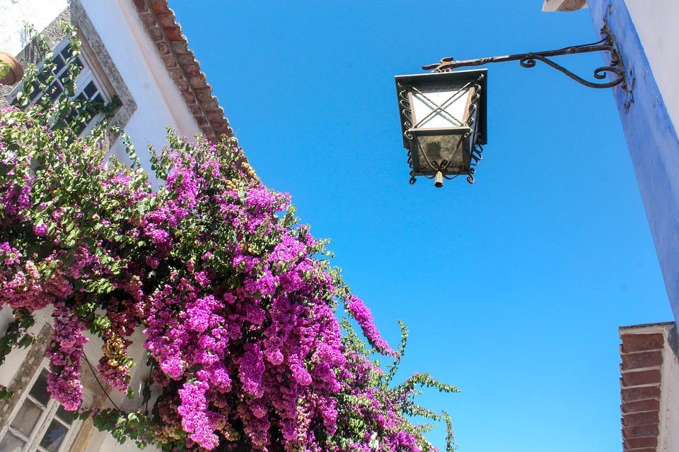 Buganvilias, Village, Travel, Portugal, Town, Spring