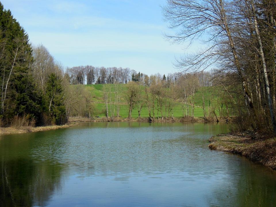 Waldsee, Spring, Upper Bavaria, Achental, Mirroring